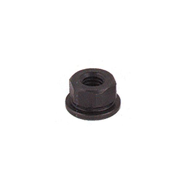Flange Nut,1//4-20,Gr 2,ST,B//O 41601